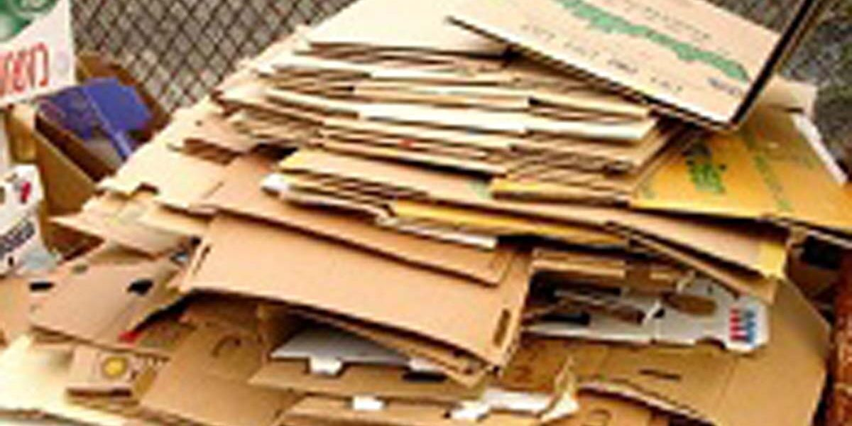 on site shredding service - cardboard recycling